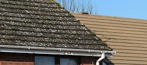 Gutter and roof cleaning in Sittingbourne and Faversham
